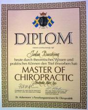 Chiropraktik und Osteopathie Koblenz